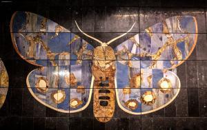 Métro Amsterdam - Papillon